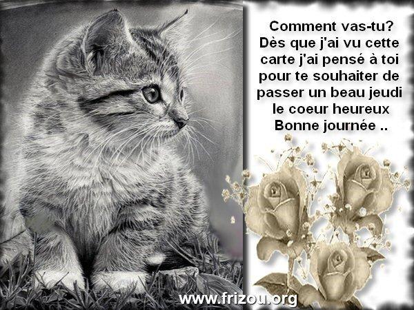 citation du jour/celebres et images de colette - Page 5 Commen11