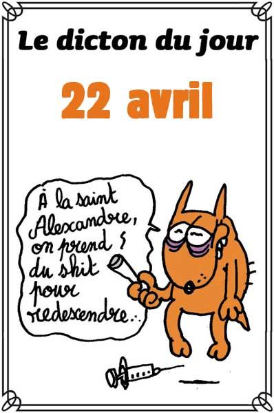 dictons du jour et dictons humour de colette - Page 5 Dicton44
