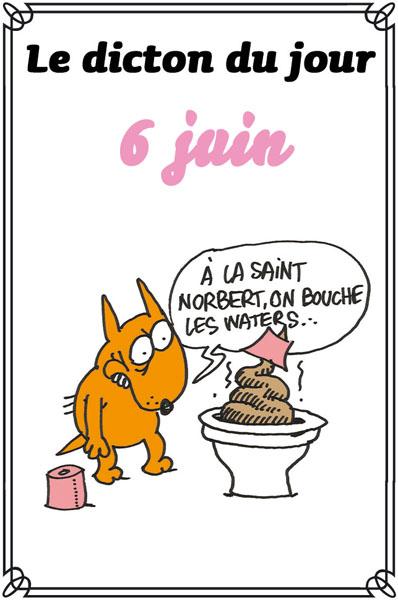 dicton du jour / dicton humour Dicton72