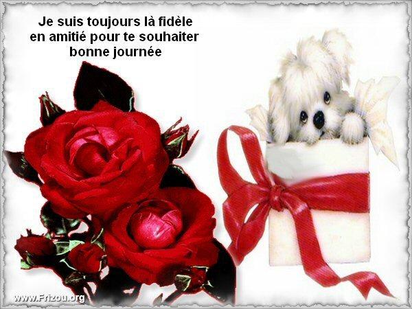 citation du jour/celebres et images de colette - Page 5 Je_sui10