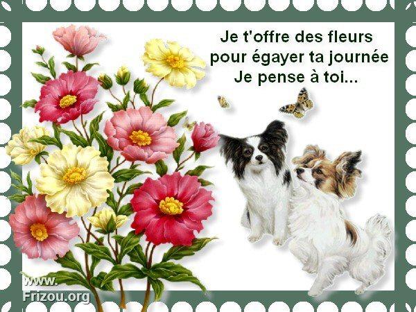 citation du jour/celebres et images de colette - Page 5 Je_t_o10