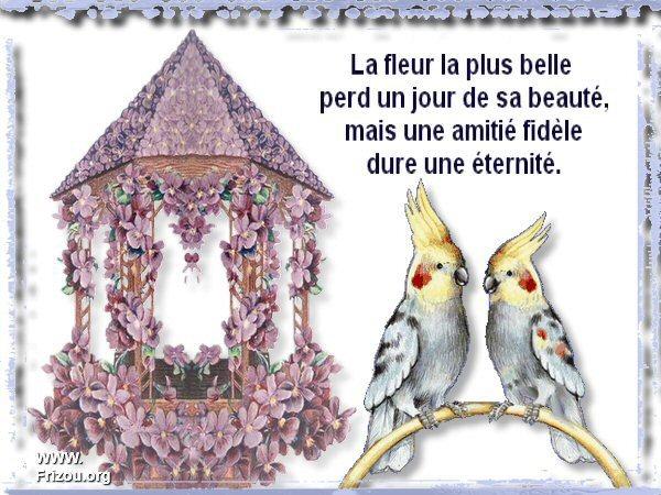 citation du jour/celebres et images de colette - Page 5 La_fle10
