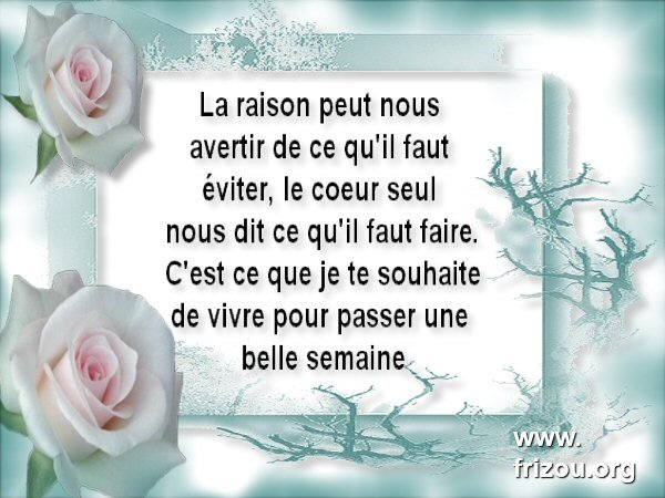 citation du jour/celebres et images de colette - Page 5 La_rai10