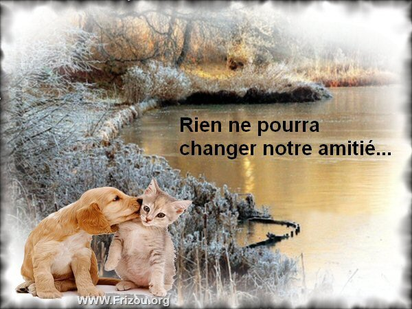 citations celebres et citations images ou pas - Page 15 Rien_n10