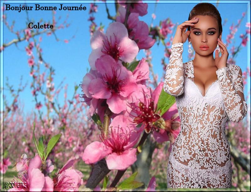 pause detente bonjour a bonsoir - Page 3 Tag_pr10