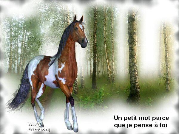 citation du jour / celebre / et images Un_pet12