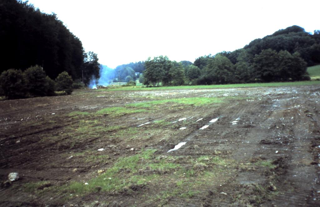 Naissance et adolescence de mon étang 3-1-2010