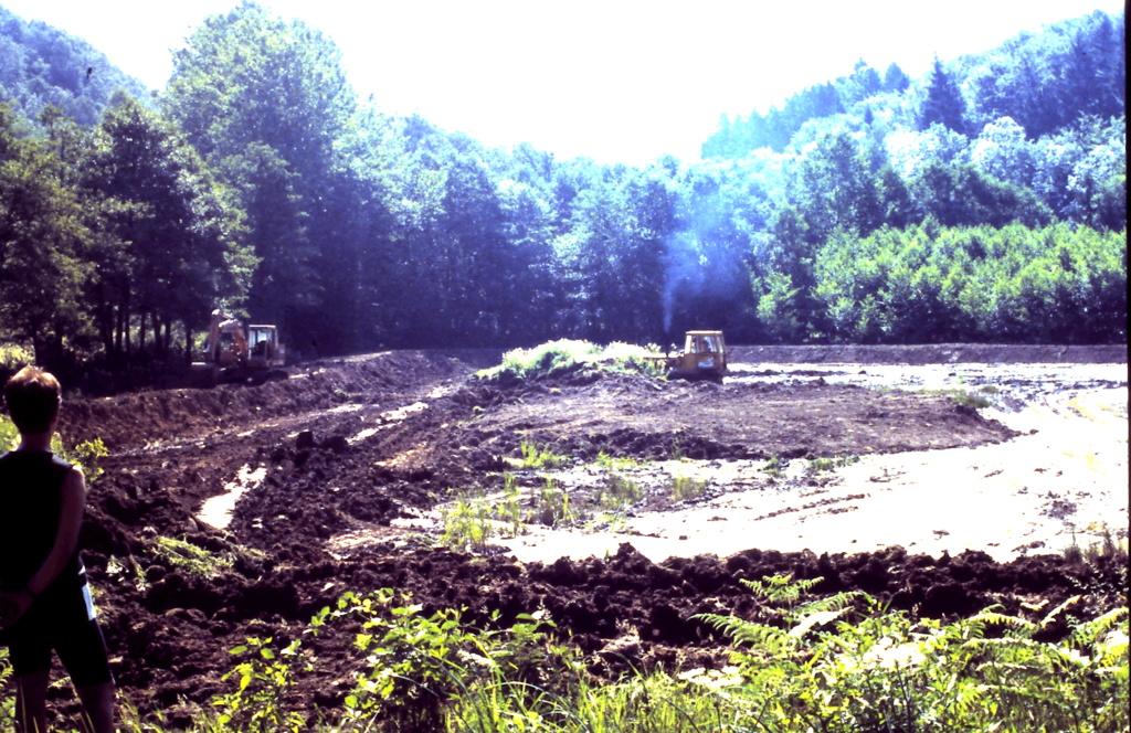 Naissance et adolescence de mon étang 3-1-2015