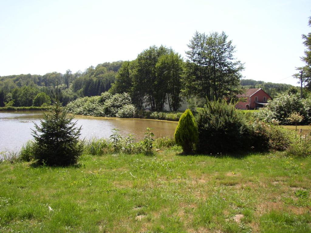 Naissance et adolescence de mon étang P1010011