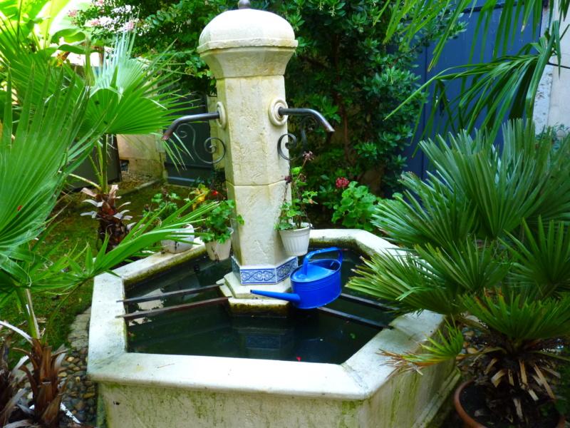 Micro-jardin : mon patio andalou P1050414