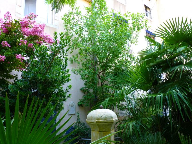Micro-jardin : mon patio andalou P1050427