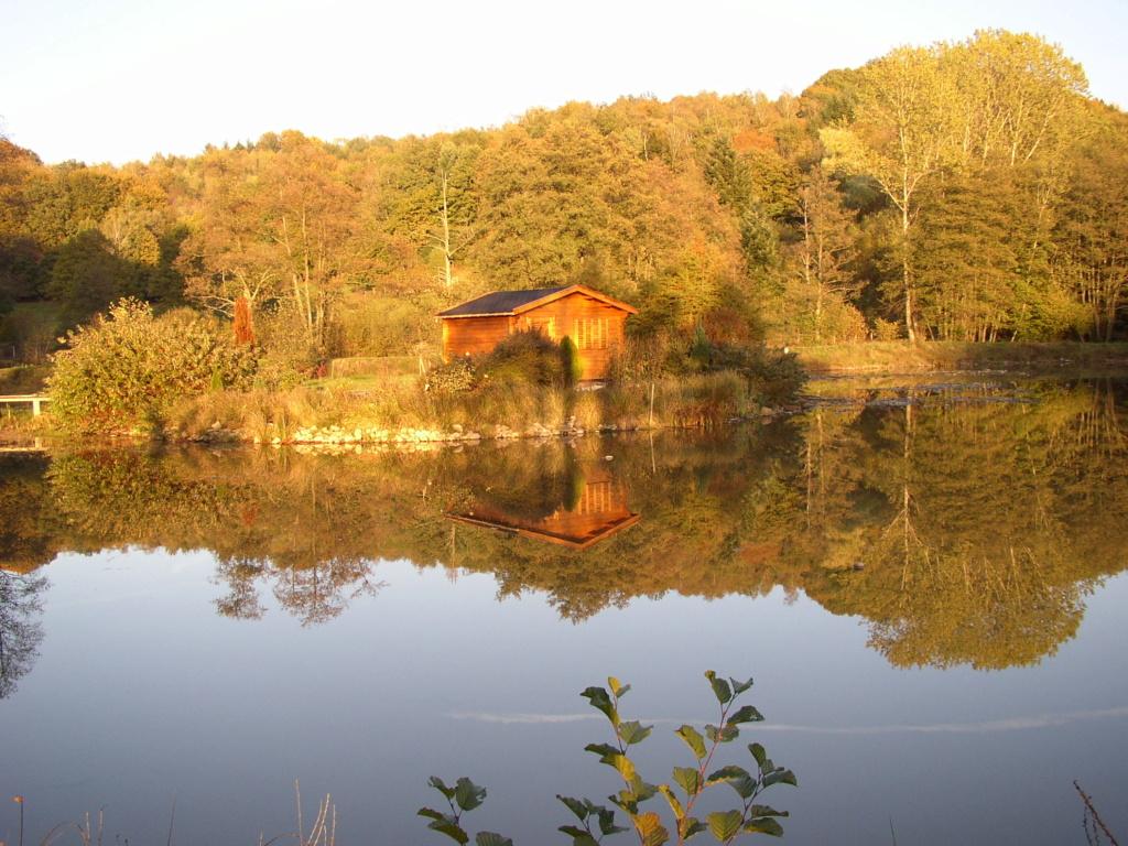 Naissance et adolescence de mon étang P3180010