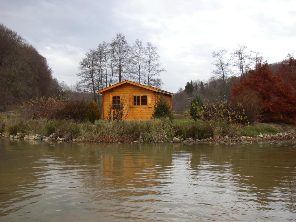 Naissance et adolescence de mon étang P4140011