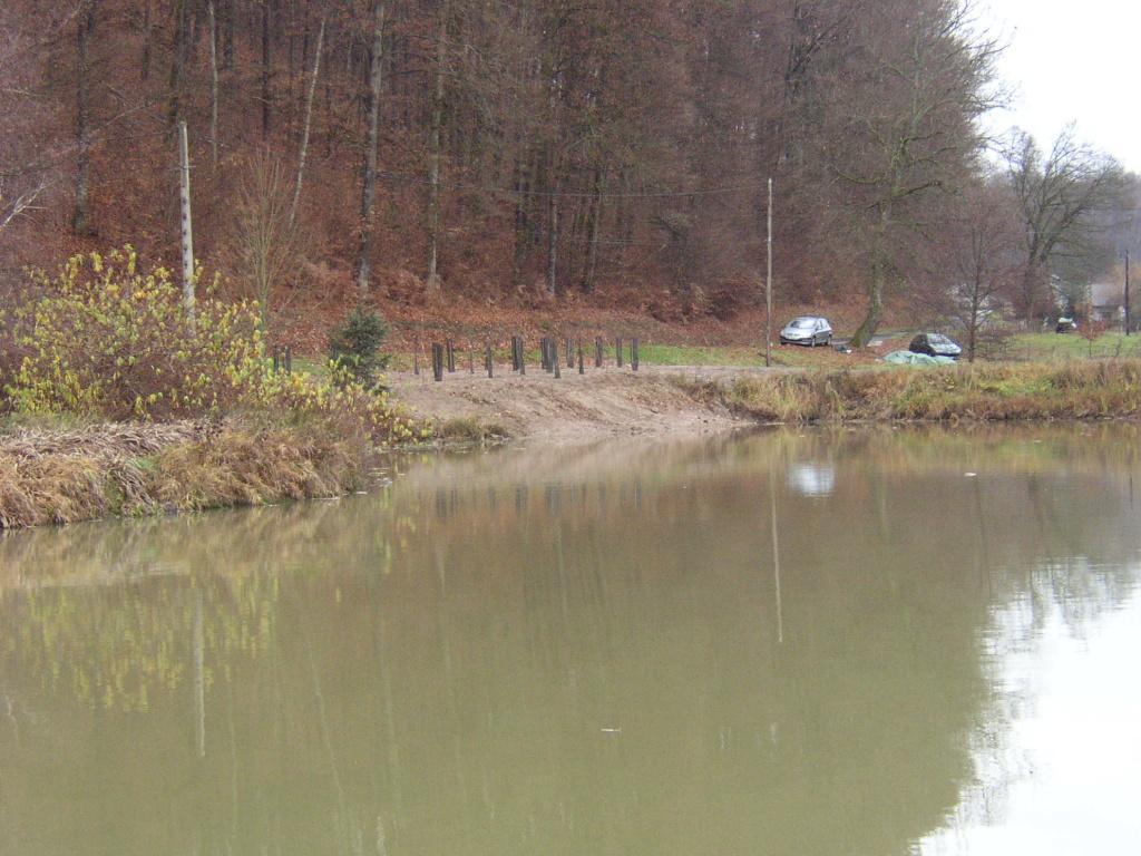 Naissance et adolescence de mon étang P4210010