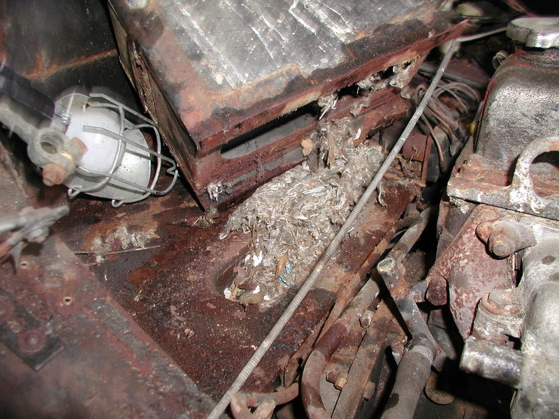 How a rusty 1963 Corvair turned into a slightly less rusty 1977 MG Midget Midget29