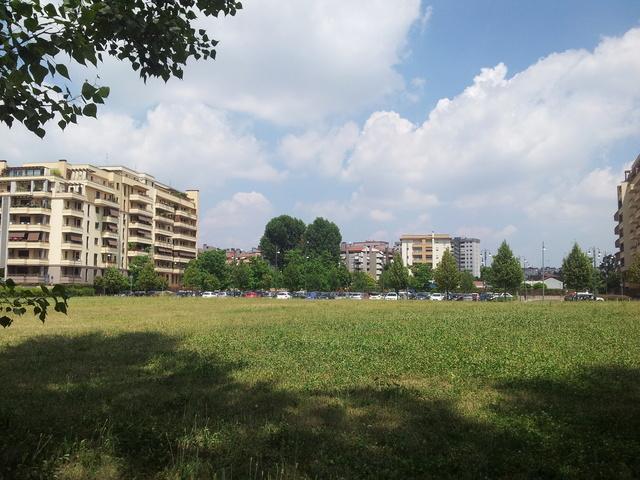 Domenica 4/6 Milano parco delle cave - Pagina 2 20170615