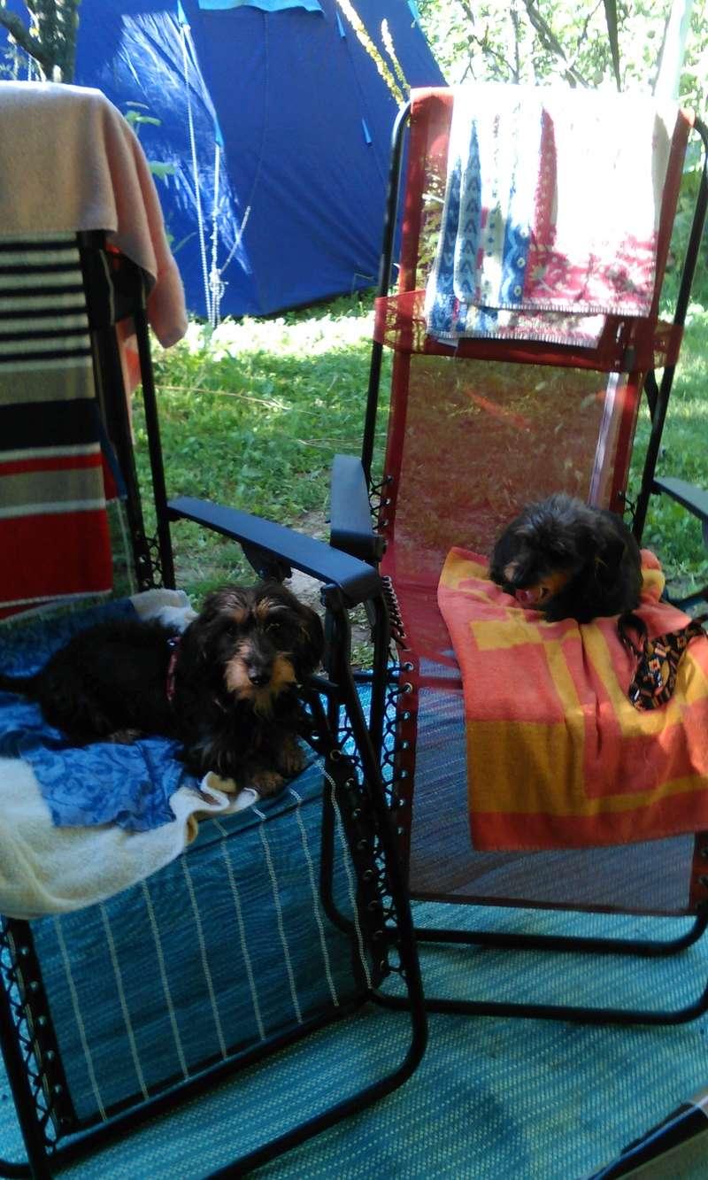 Conseil chaise de camping Campin10