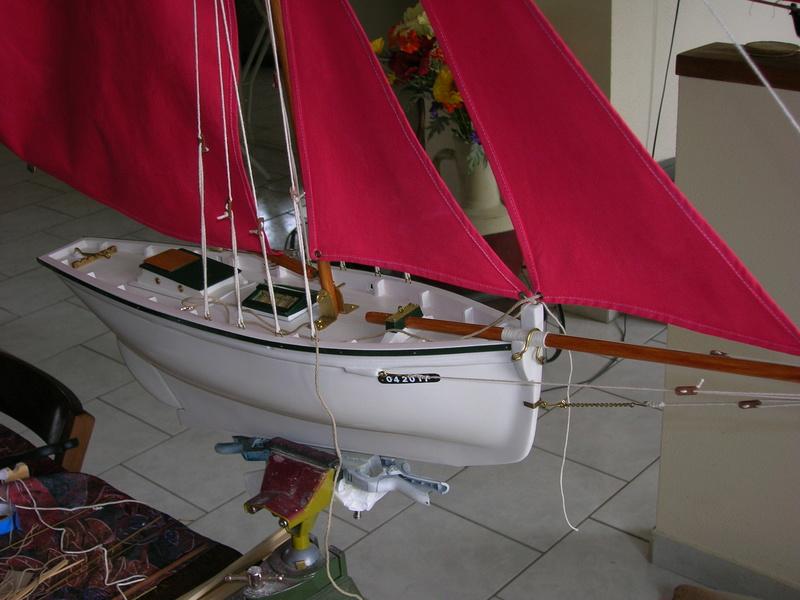 L' Albatros Blanc des  Mers Dscn7712