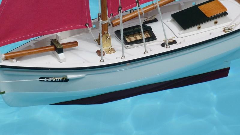 L' Albatros Blanc des  Mers P1040910
