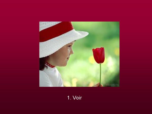 *¤*~Coup de coeur à faire partager~*¤* - Page 24 Les-se35
