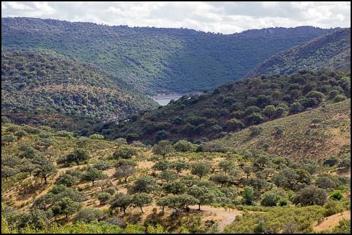 [Espagne] Parc national de Montfragüe Img_4217