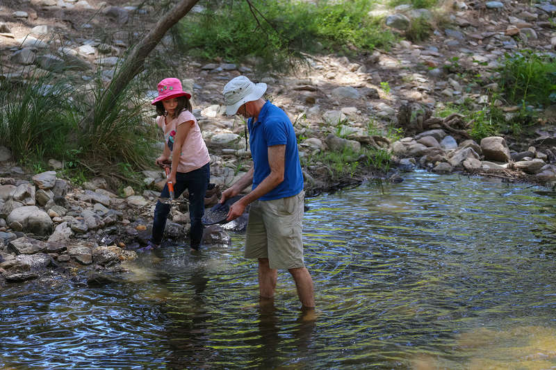 Ophir Goldfield Reserve trip - 2017 - in pictures. Img_6715
