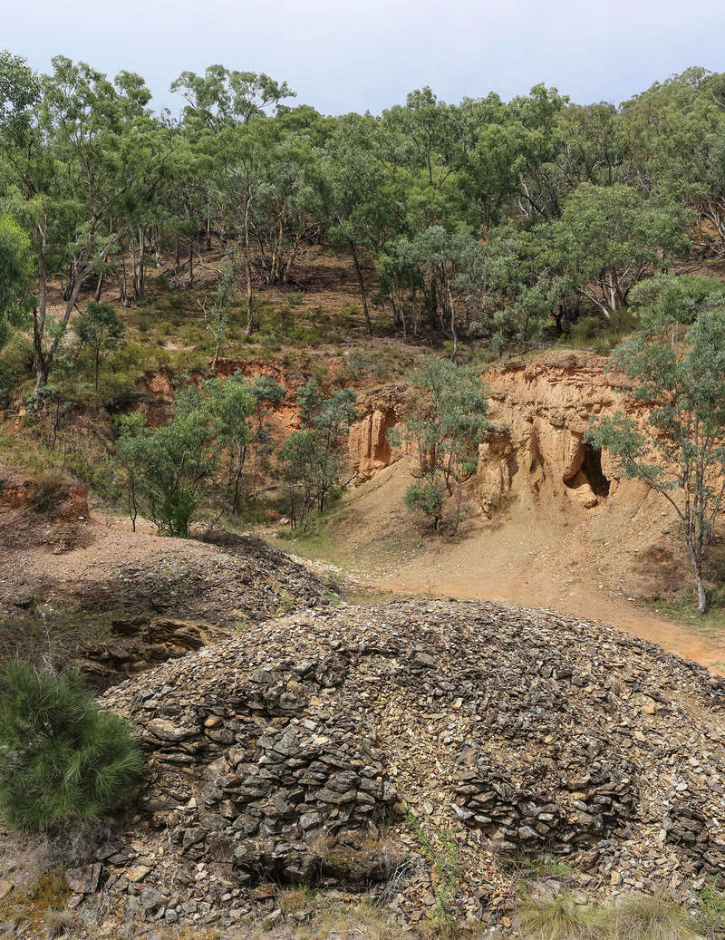 Ophir Goldfield Reserve trip - 2017 - in pictures. Img_9913