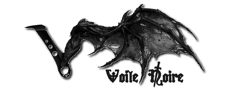 Voile Noire - Le modélisme historique (ou pas ^^) Voile_12