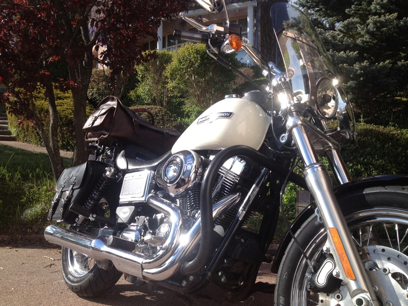 DYNA LOW RIDER ,combien sommes nous ? - Page 9 Img_1413