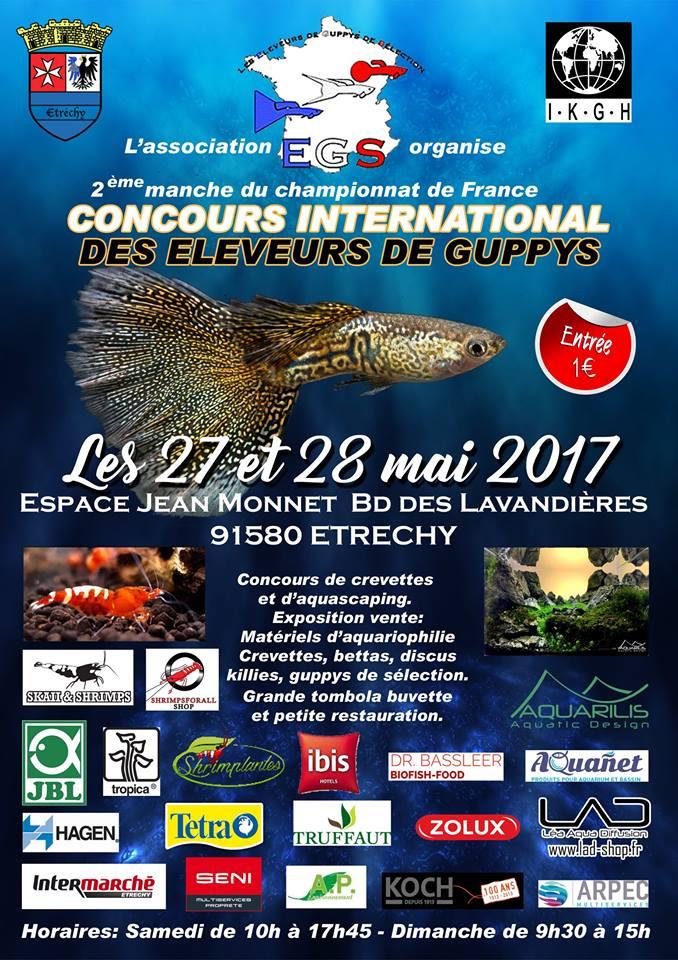 Concours guppys 27&28 mai 2017  865ac312
