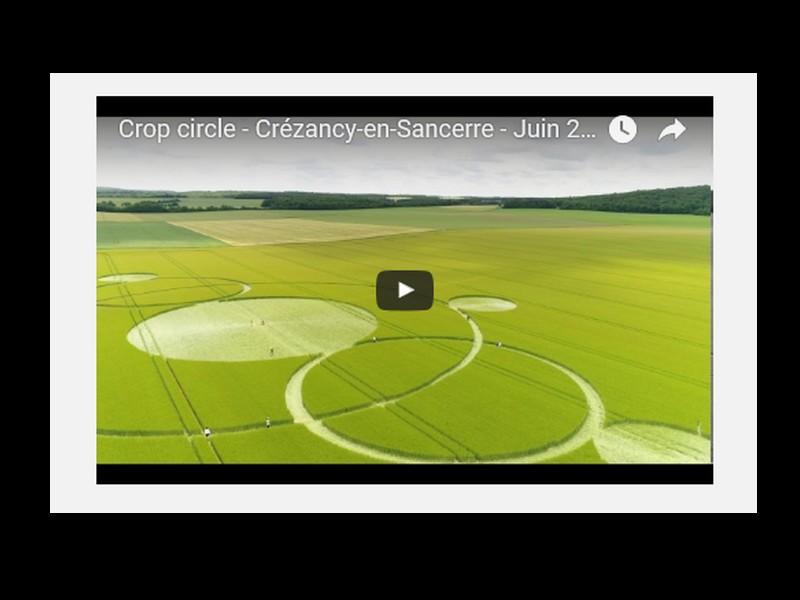 Enigmatique crop circle découvert dans le Cher ( Crop circle - Crézancy-en-Sancerre - Juin 2017 ) 341