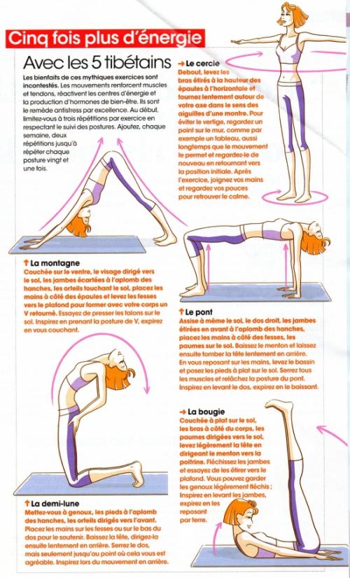 Yoga: les 5 tibetains 1a62b210