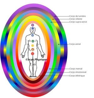 Physiologie énergétique Img_0810