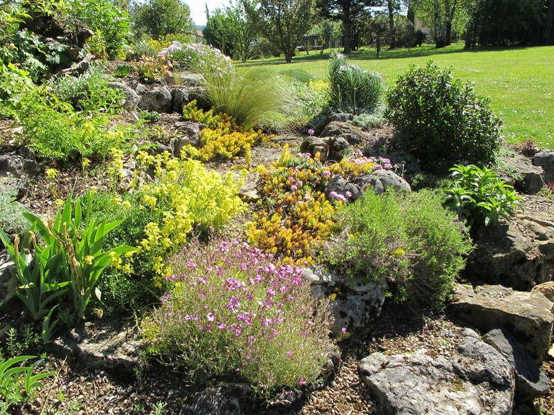 mois de mai au jardin Img_8416
