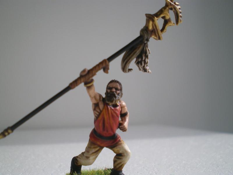 Les Vikings de Nicos pour SAGA - Page 3 Imgp0015