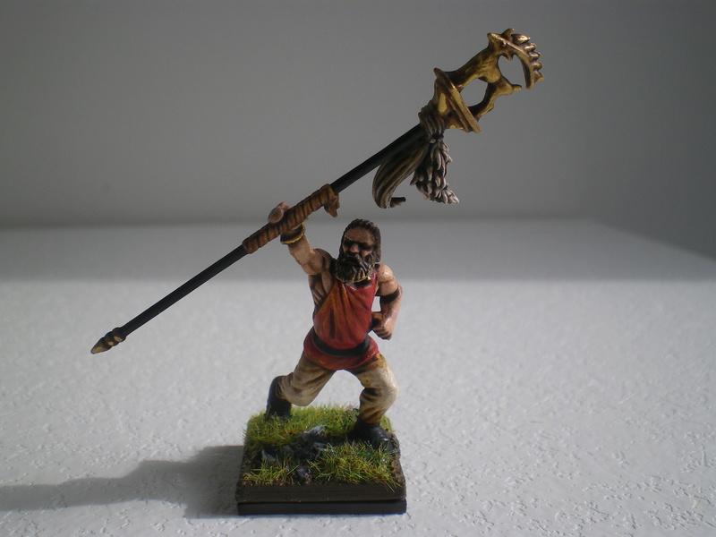 Les Vikings de Nicos pour SAGA - Page 3 Imgp0016