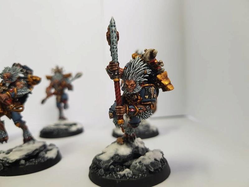 Le VLKA FENRIKA! Ma nouvelle armée! 18619910
