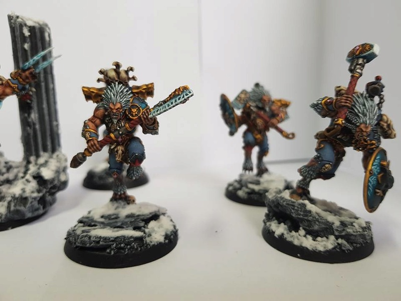 Le VLKA FENRIKA! Ma nouvelle armée! 18664210