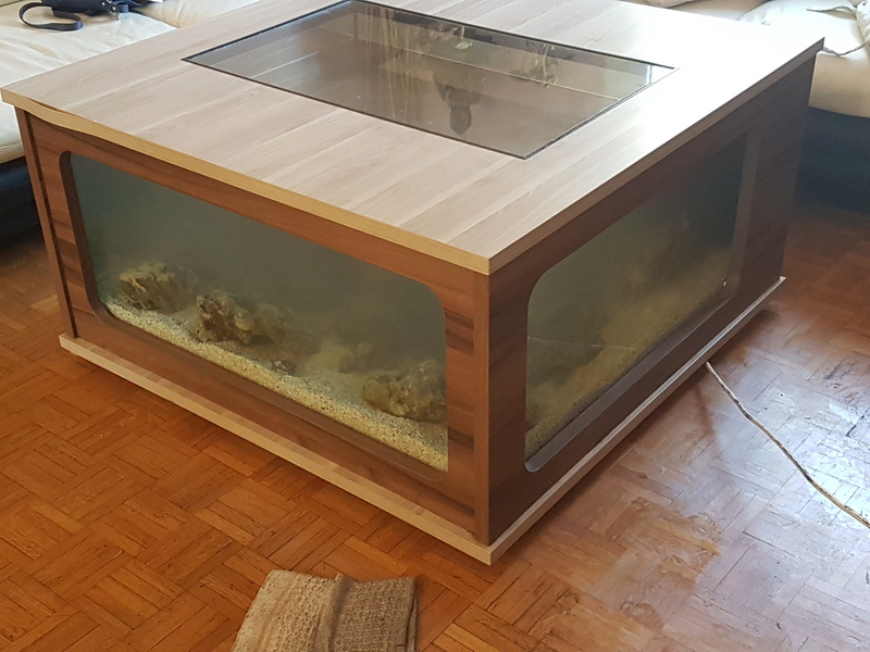 Mon aquarium de Toulouse. 360L Table basse 20170211