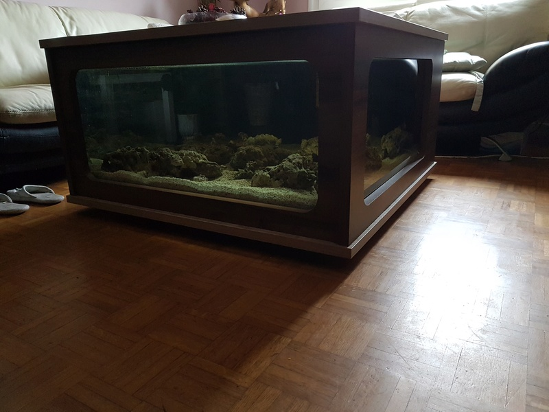 Mon aquarium de Toulouse. 360L Table basse 20170318
