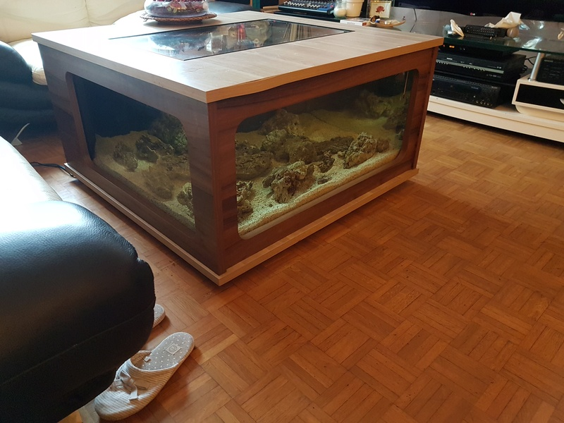 Mon aquarium de Toulouse. 360L Table basse 20170320