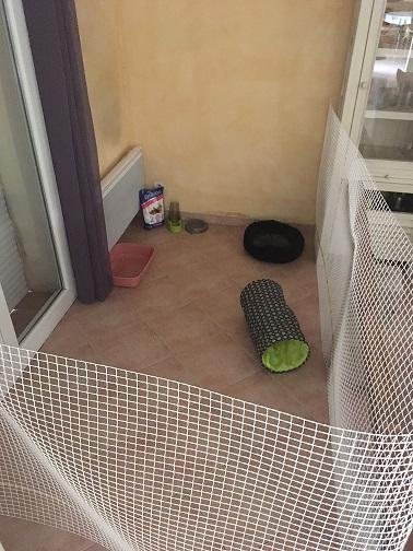 Enclos intérieur pour chaton Img_0313