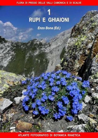 flore du val Camonica, en Lombardie 1_flor13