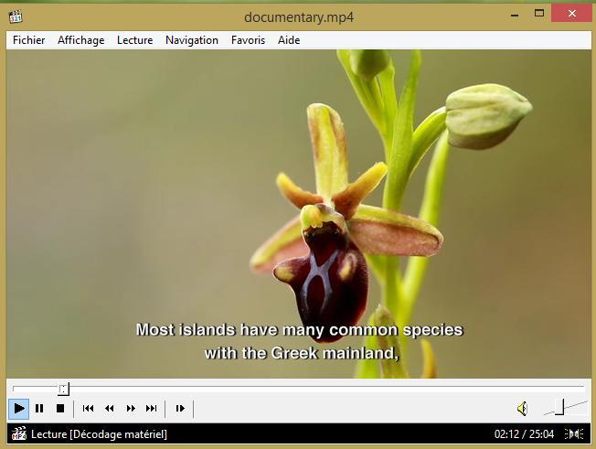 Video protection des orchidées en grece, turquie Untitl10