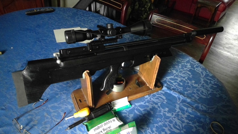 s 410 transformation bullpup - Page 2 Win_2065