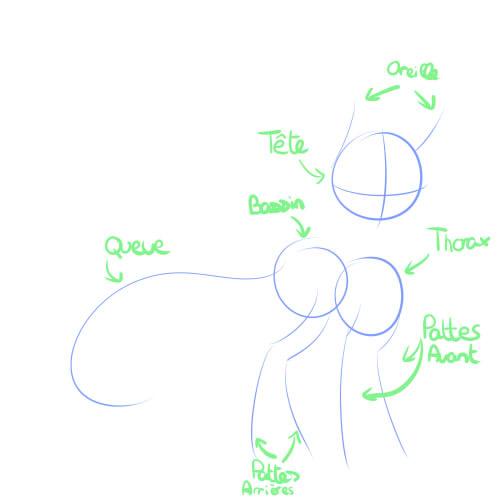 Tuto 1: Le Sketch 110