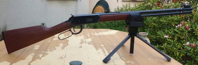 Quels plombs pour la Walther Lever Action ? P1010211