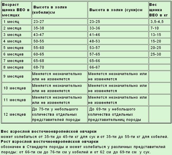 Таблица роста и веса щенка ВЕО от 1-го до 12 месяцев. 9ef75310