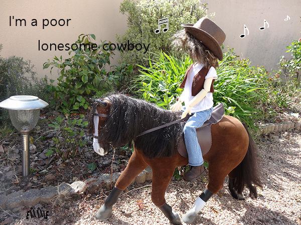 Lonesome cowboy... 174