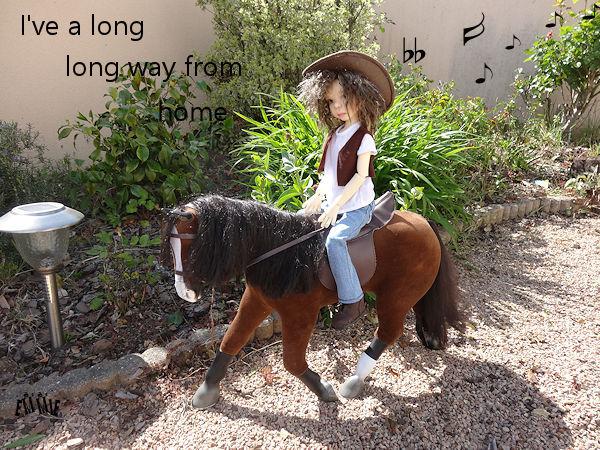 Lonesome cowboy... 270